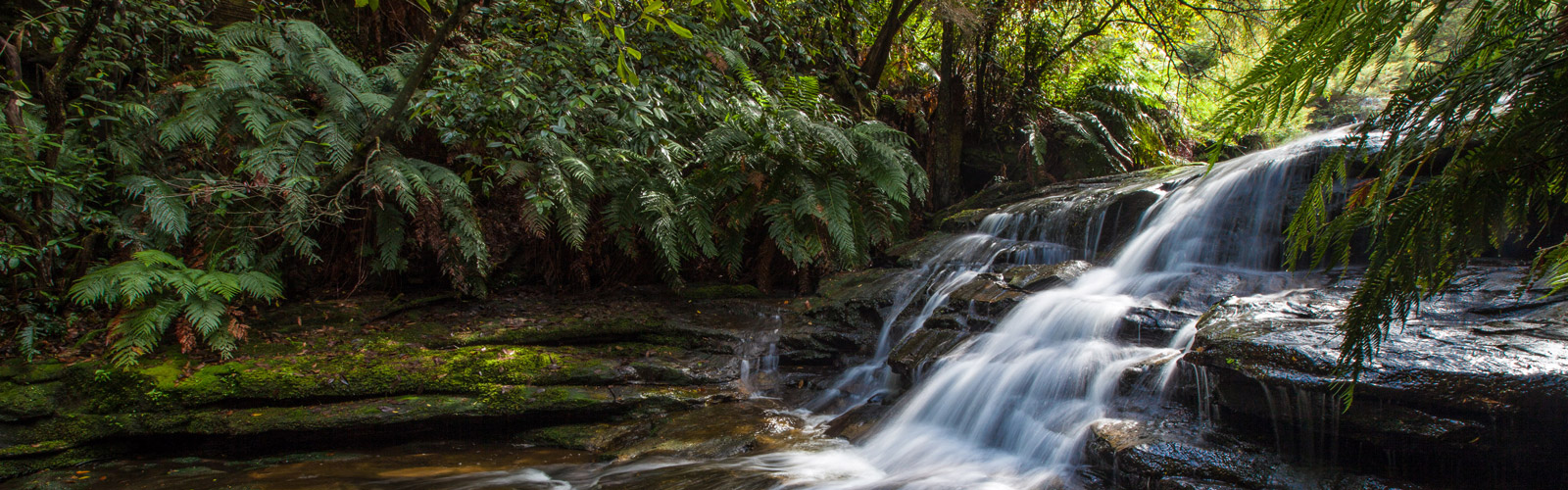 Leura, New South Wales